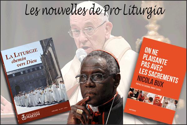Le site Proliturgia.org et Ses rubriques intéressantes à relayer. 82bc7-pro