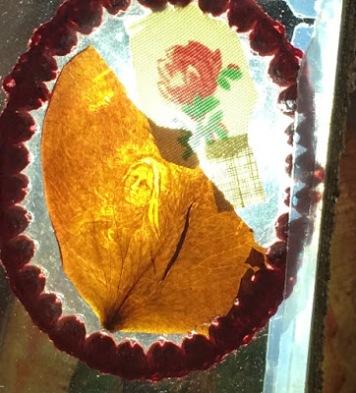 """Résultat de recherche d'images pour """"Miraculous Rose Petals from St. Therese"""""""