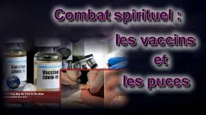 Puçage, euthanasie et vaccination |